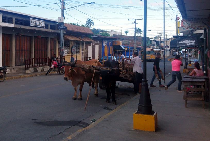 Ox-wagon in San Juan del Sur
