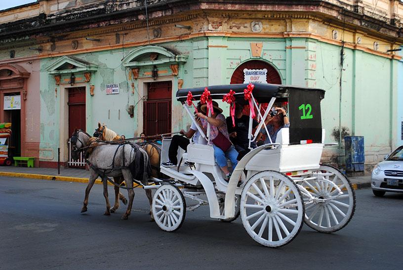 Horses & Carriage Granada