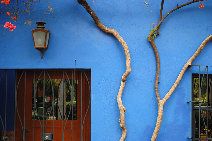 Mexican Blue
